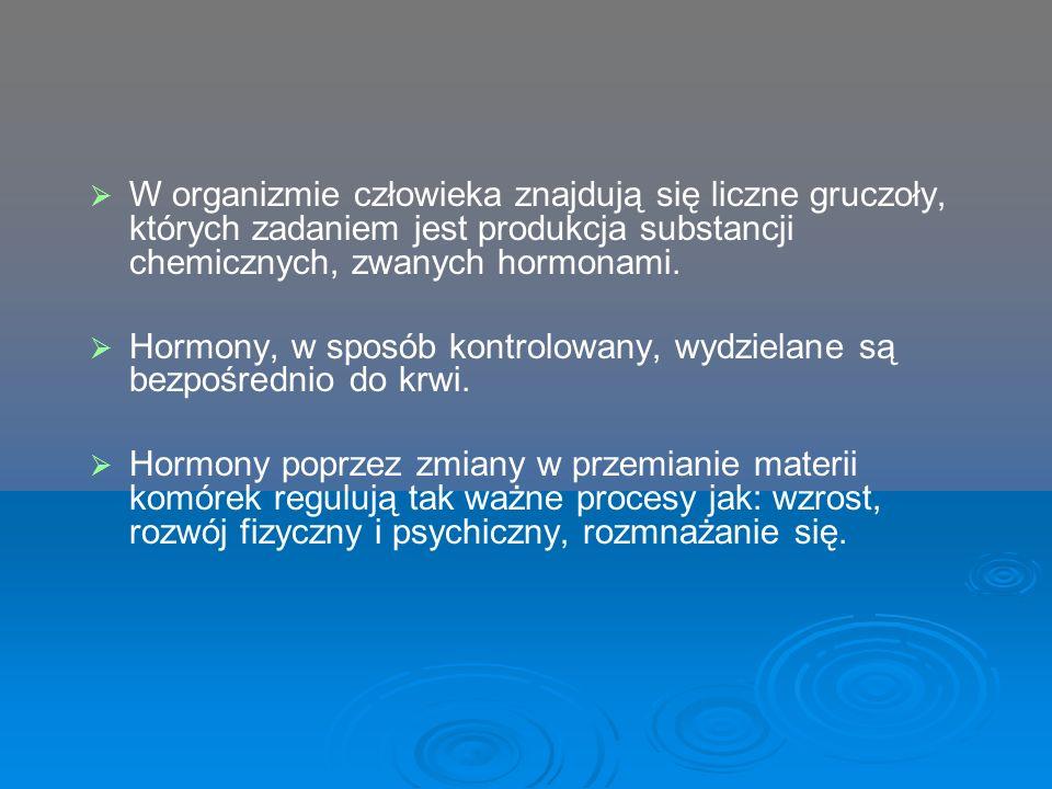 W organizmie człowieka znajdują się liczne gruczoły, których zadaniem jest produkcja substancji chemicznych, zwanych hormonami.