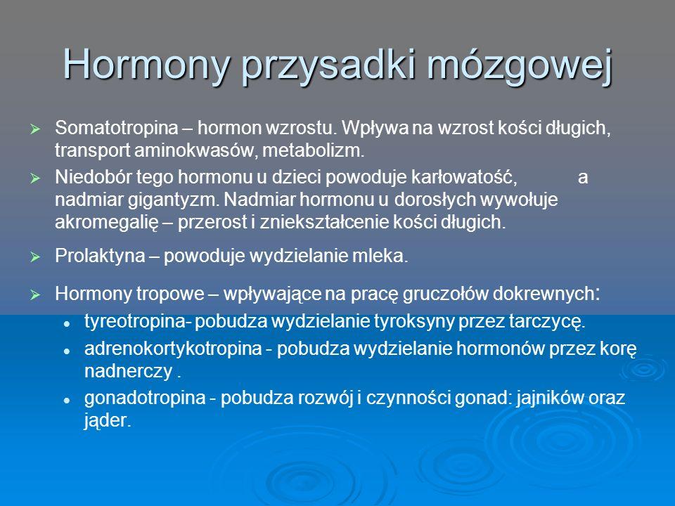 Hormony przysadki mózgowej