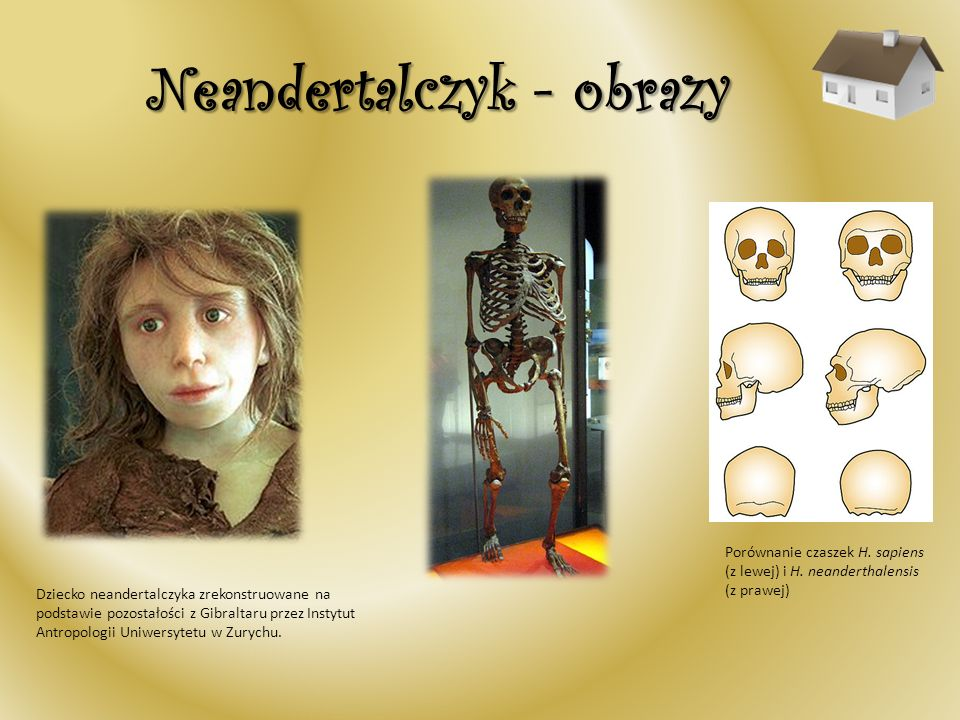 Neandertalczyk - obrazy