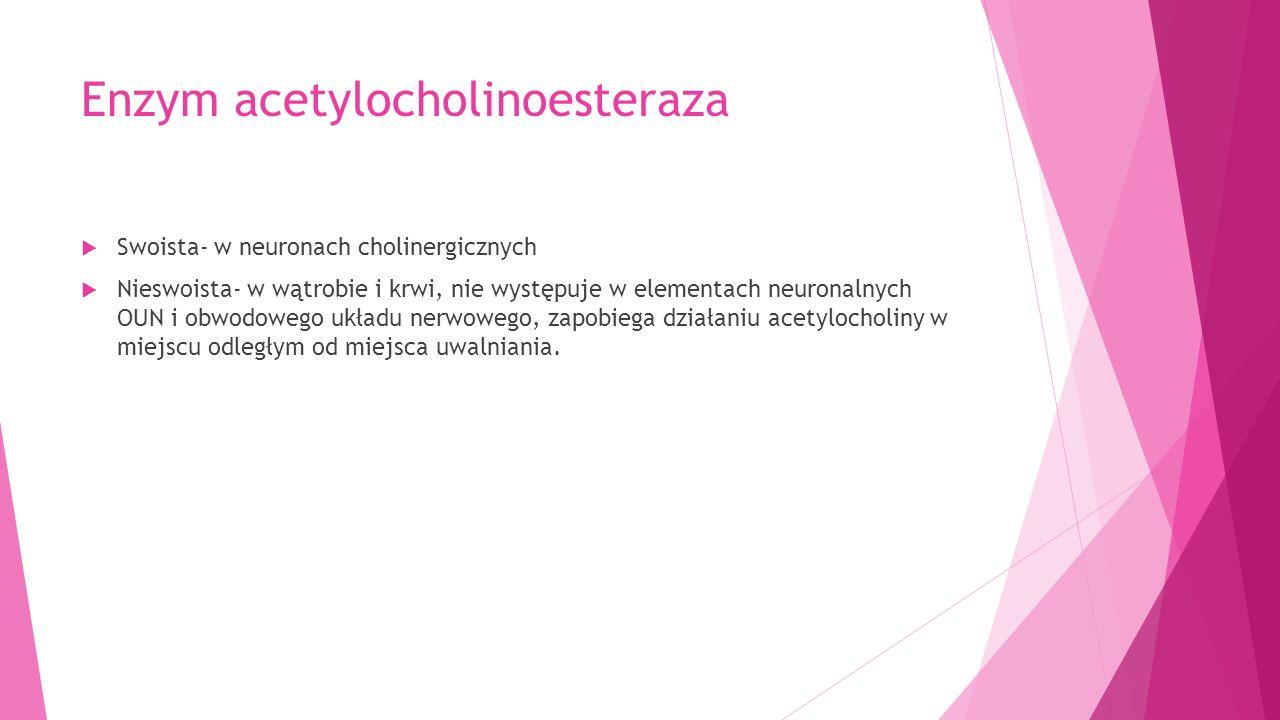 Enzym acetylocholinoesteraza