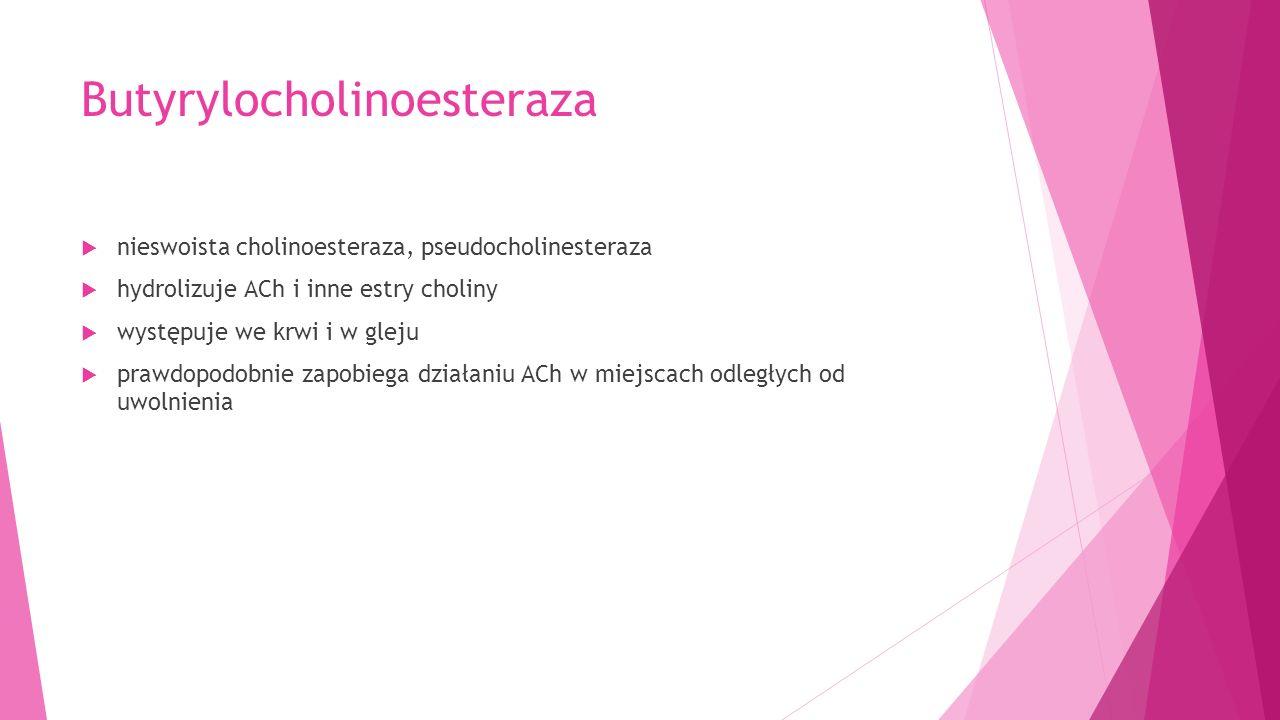 Butyrylocholinoesteraza