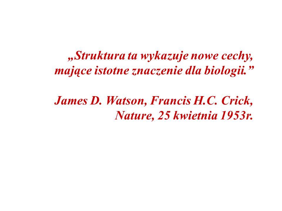"""""""Struktura ta wykazuje nowe cechy, mające istotne znaczenie dla biologii."""