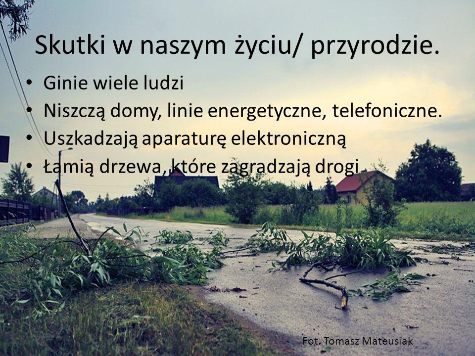 Skutki w naszym życiu/ przyrodzie.