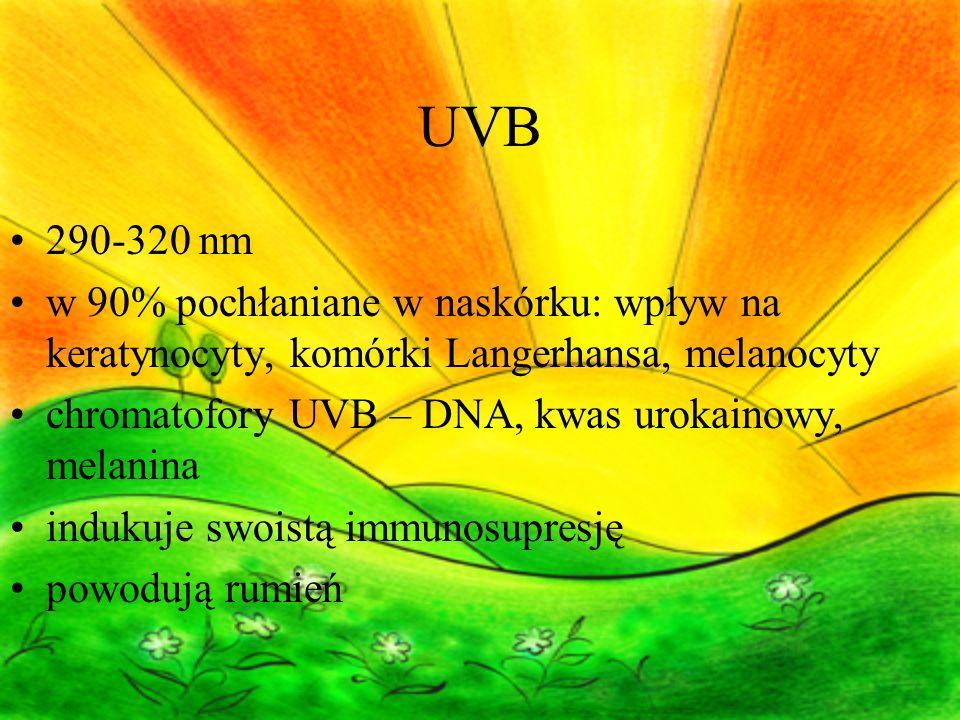 UVB 290-320 nm. w 90% pochłaniane w naskórku: wpływ na keratynocyty, komórki Langerhansa, melanocyty.