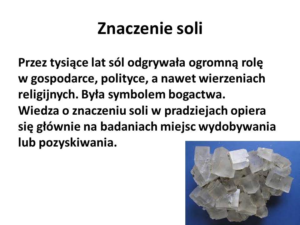Znaczenie soli