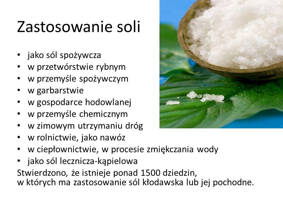 Zastosowanie soli jako sól spożywcza w przetwórstwie rybnym