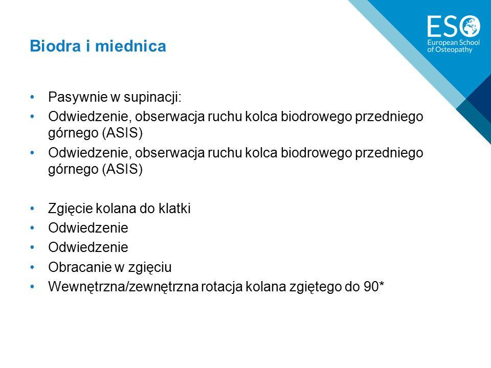 Biodra i miednica Pasywnie w supinacji: