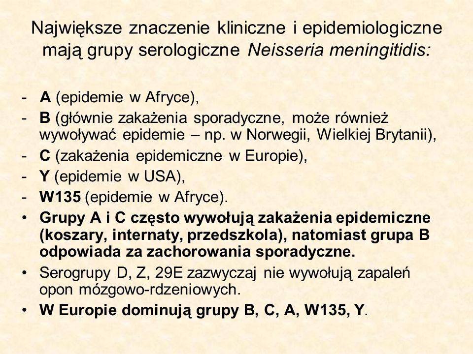 Największe znaczenie kliniczne i epidemiologiczne mają grupy serologiczne Neisseria meningitidis: