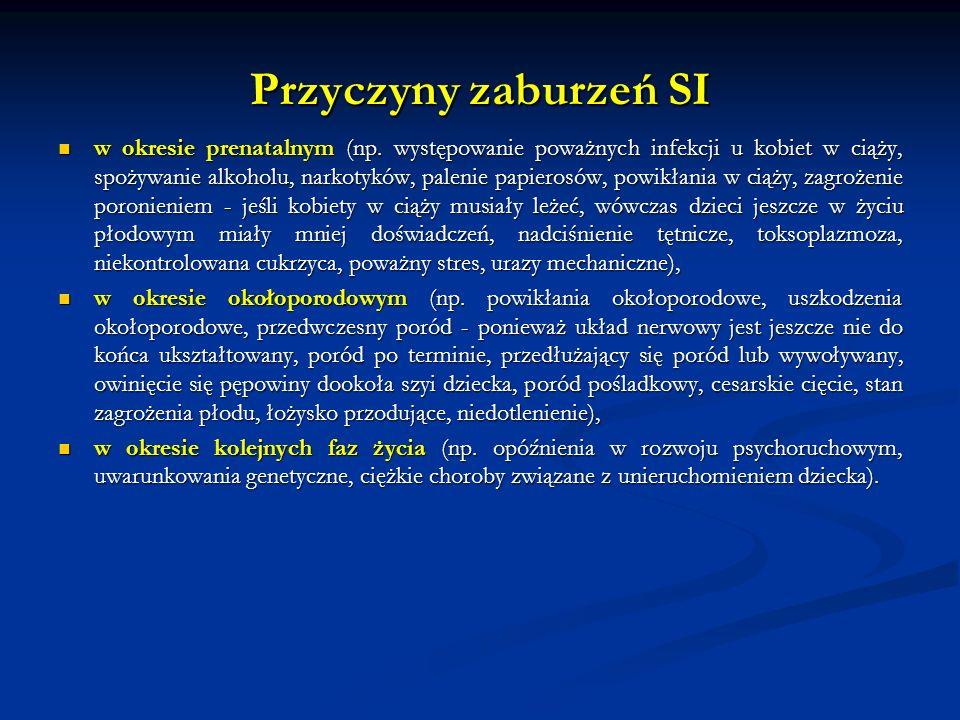 Przyczyny zaburzeń SI