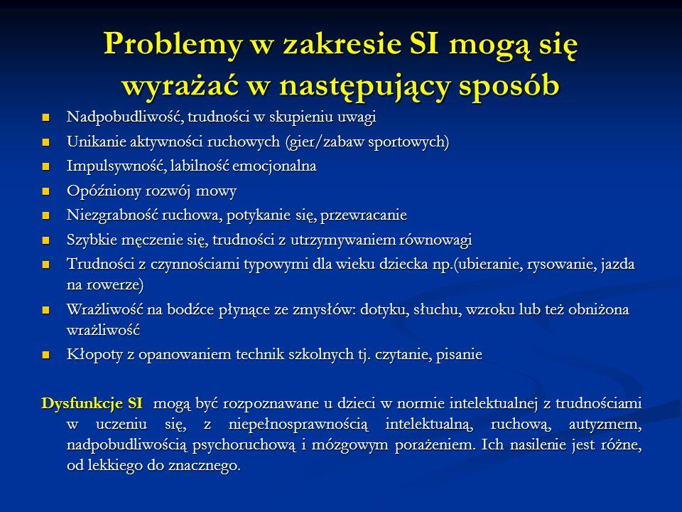 Problemy w zakresie SI mogą się wyrażać w następujący sposób