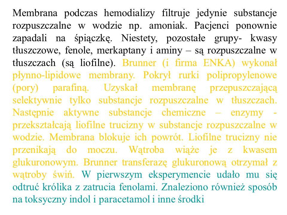 Membrana podczas hemodializy filtruje jedynie substancje rozpuszczalne w wodzie np.