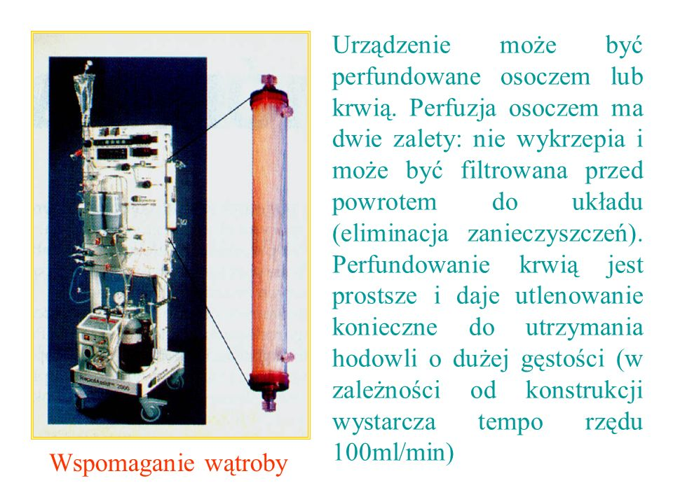 Urządzenie może być perfundowane osoczem lub krwią