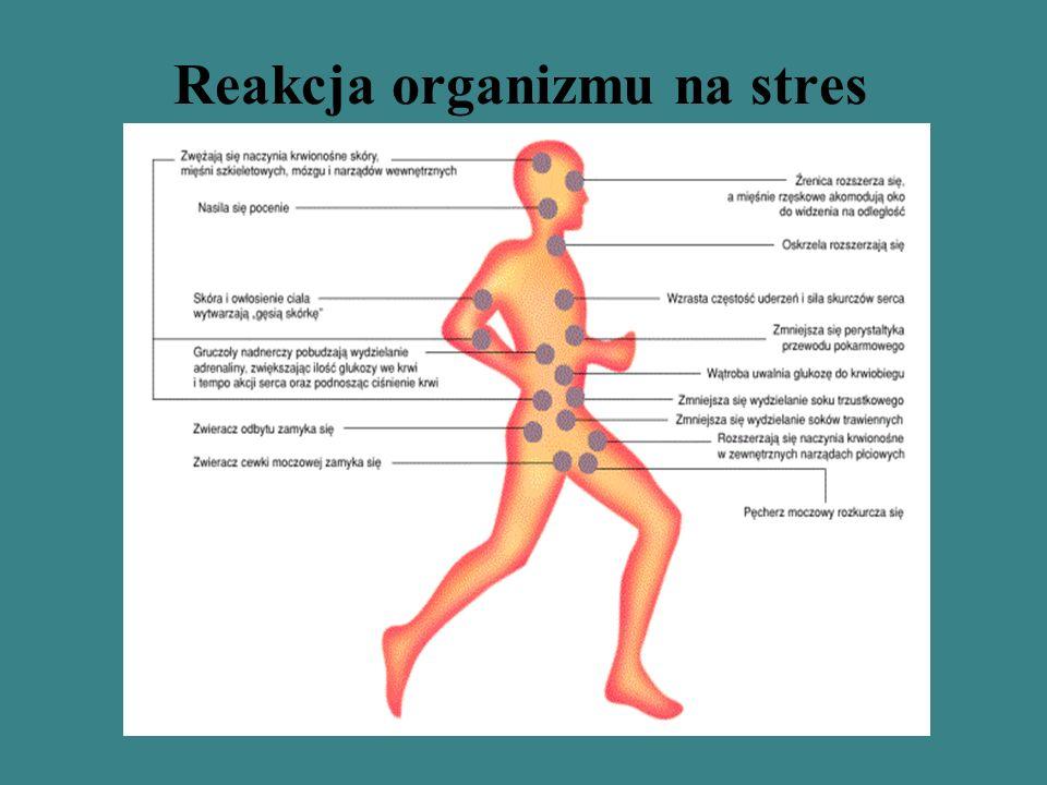 Reakcja organizmu na stres