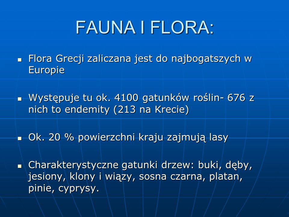 FAUNA I FLORA: Flora Grecji zaliczana jest do najbogatszych w Europie