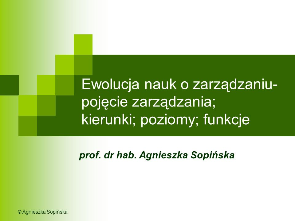 prof. dr hab. Agnieszka Sopińska