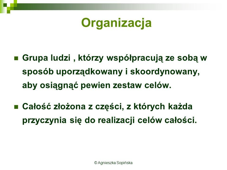 Organizacja Grupa ludzi , którzy współpracują ze sobą w sposób uporządkowany i skoordynowany, aby osiągnąć pewien zestaw celów.