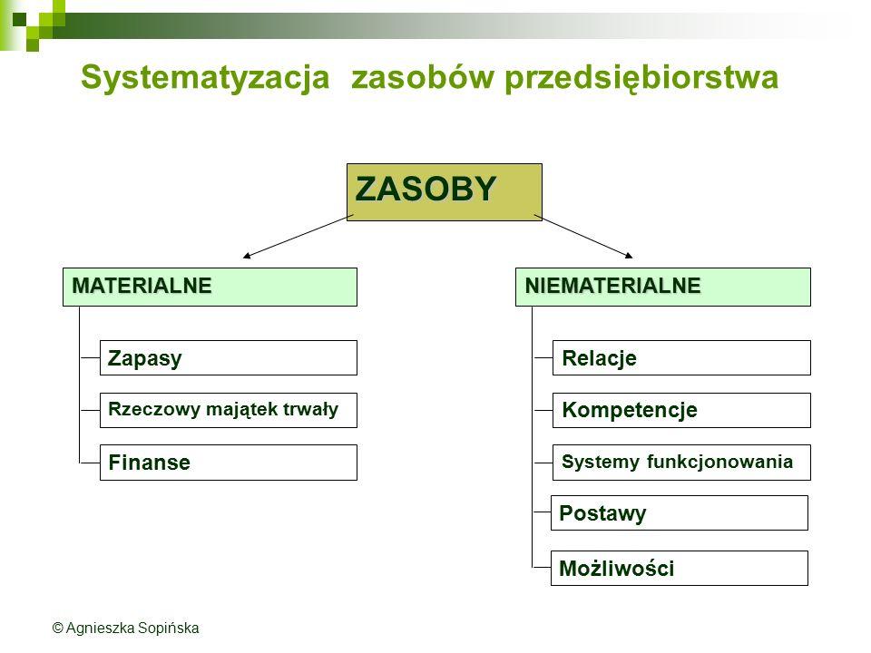 Systematyzacja zasobów przedsiębiorstwa