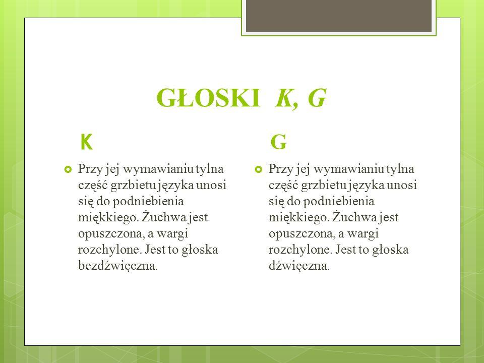GŁOSKI K, G K. G.