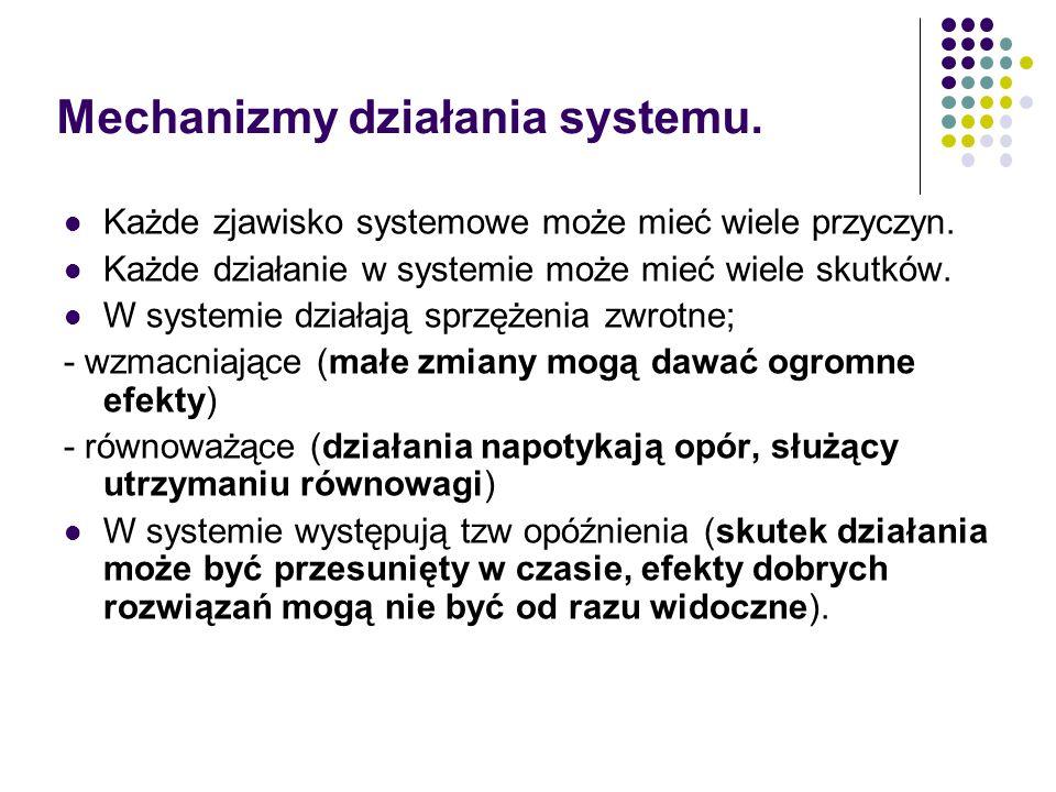 Mechanizmy działania systemu.