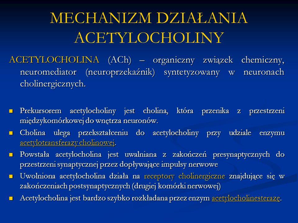 MECHANIZM DZIAŁANIA ACETYLOCHOLINY