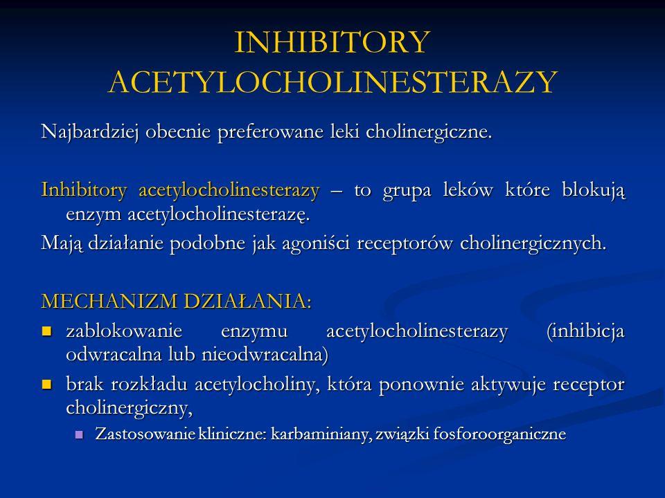 INHIBITORY ACETYLOCHOLINESTERAZY