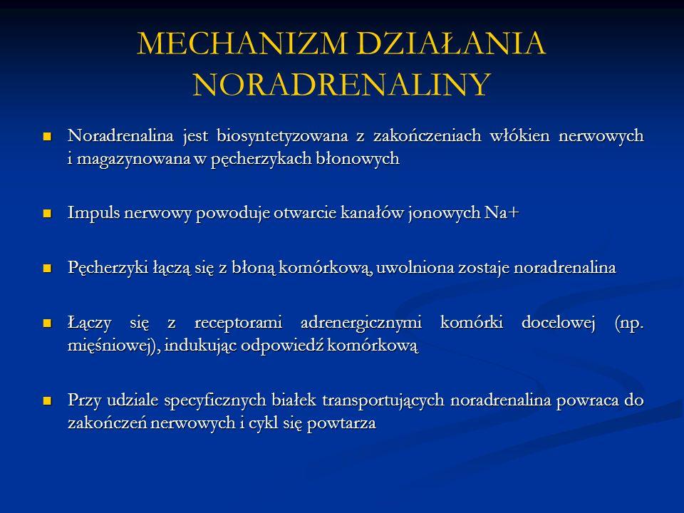 MECHANIZM DZIAŁANIA NORADRENALINY
