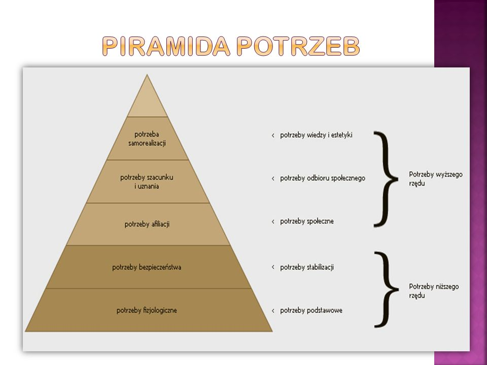Piramida potrzeb