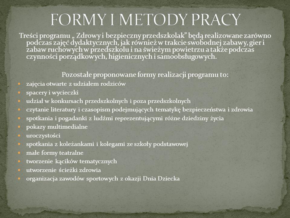 Pozostałe proponowane formy realizacji programu to: