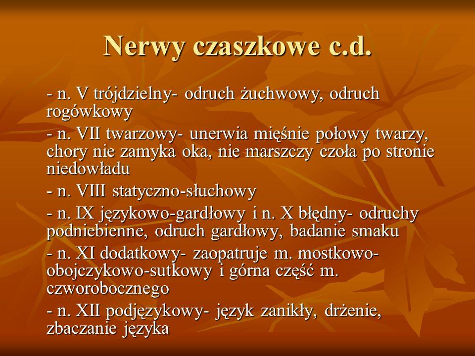 Nerwy czaszkowe c.d. - n. V trójdzielny- odruch żuchwowy, odruch rogówkowy.