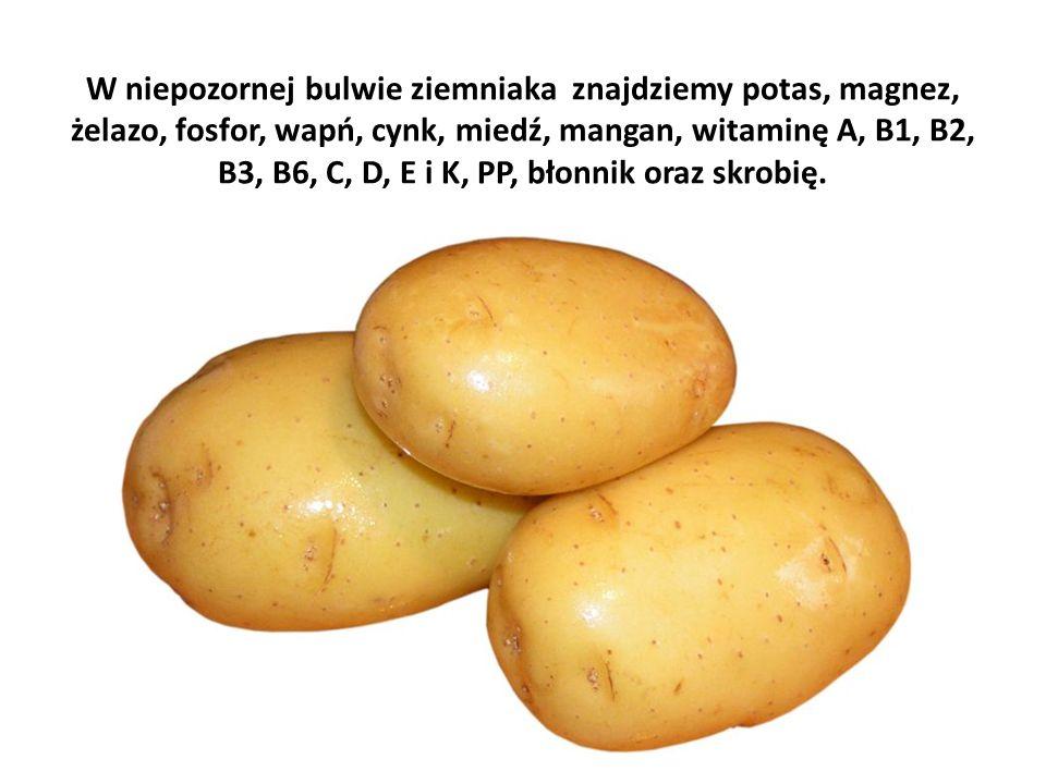 W niepozornej bulwie ziemniaka znajdziemy potas, magnez, żelazo, fosfor, wapń, cynk, miedź, mangan, witaminę A, B1, B2, B3, B6, C, D, E i K, PP, błonnik oraz skrobię.