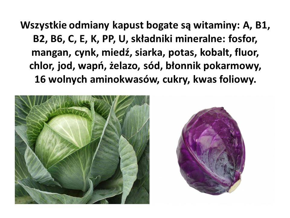 Wszystkie odmiany kapust bogate są witaminy: A, B1, B2, B6, C, E, K, PP, U, składniki mineralne: fosfor, mangan, cynk, miedź, siarka, potas, kobalt, fluor, chlor, jod, wapń, żelazo, sód, błonnik pokarmowy, 16 wolnych aminokwasów, cukry, kwas foliowy.