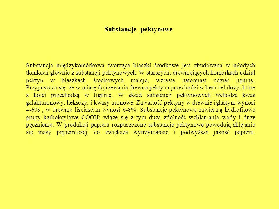 Substancje pektynowe