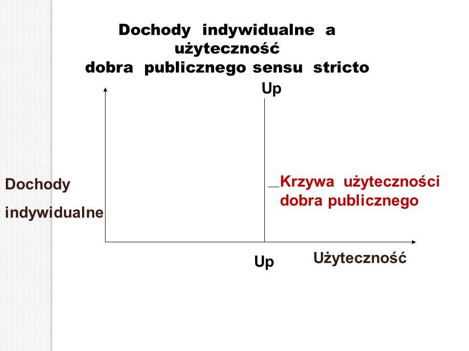Dochody indywidualne a użyteczność dobra publicznego sensu stricto