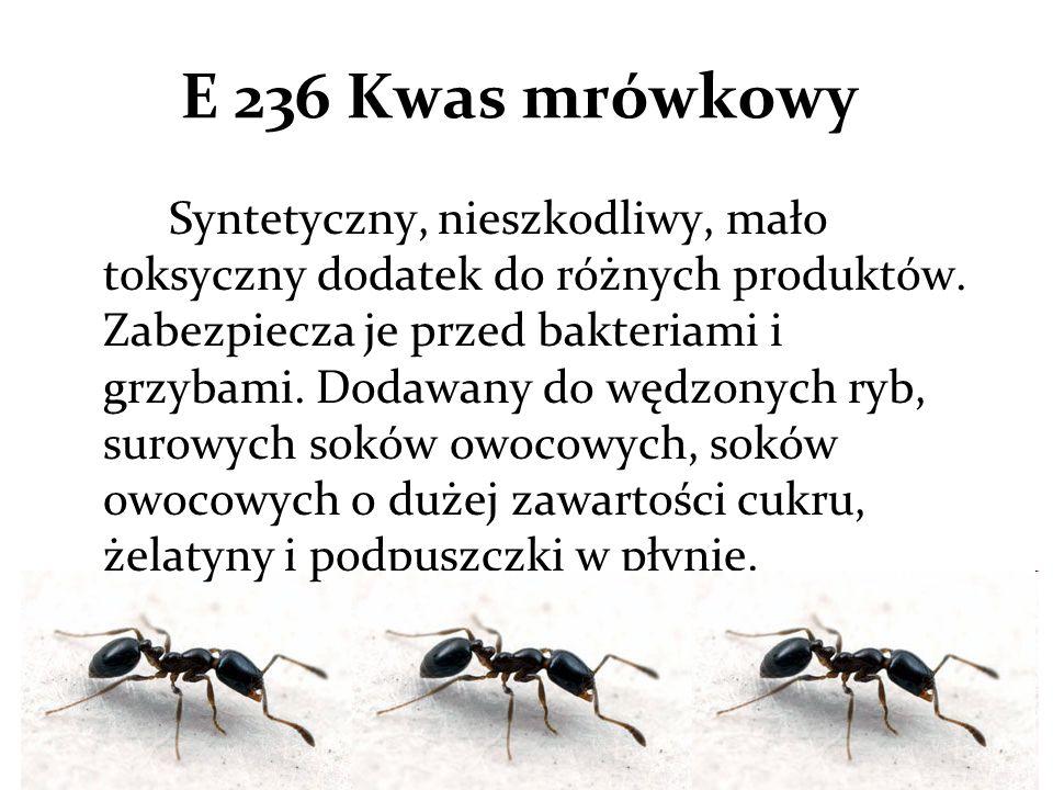 E 236 Kwas mrówkowy