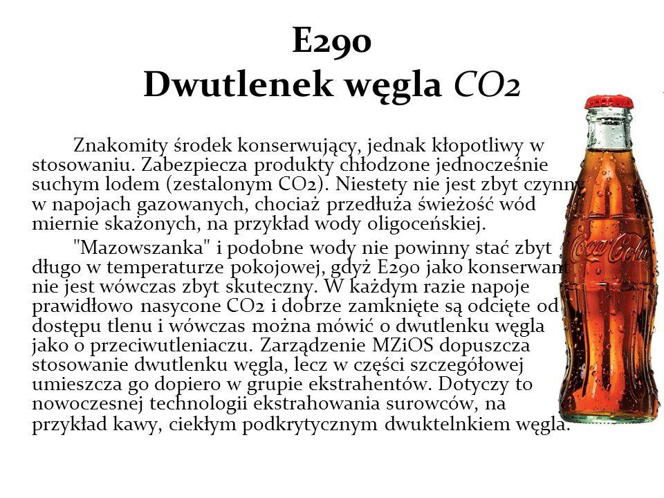 E290 Dwutlenek węgla CO2