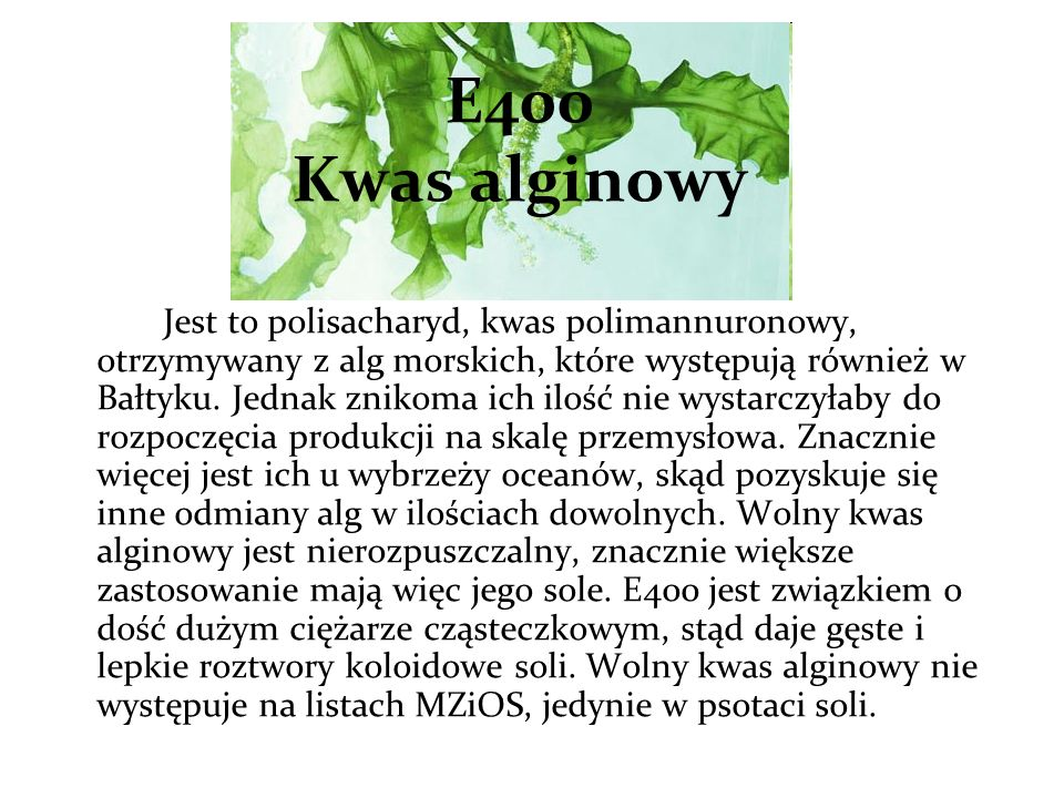 E400 Kwas alginowy
