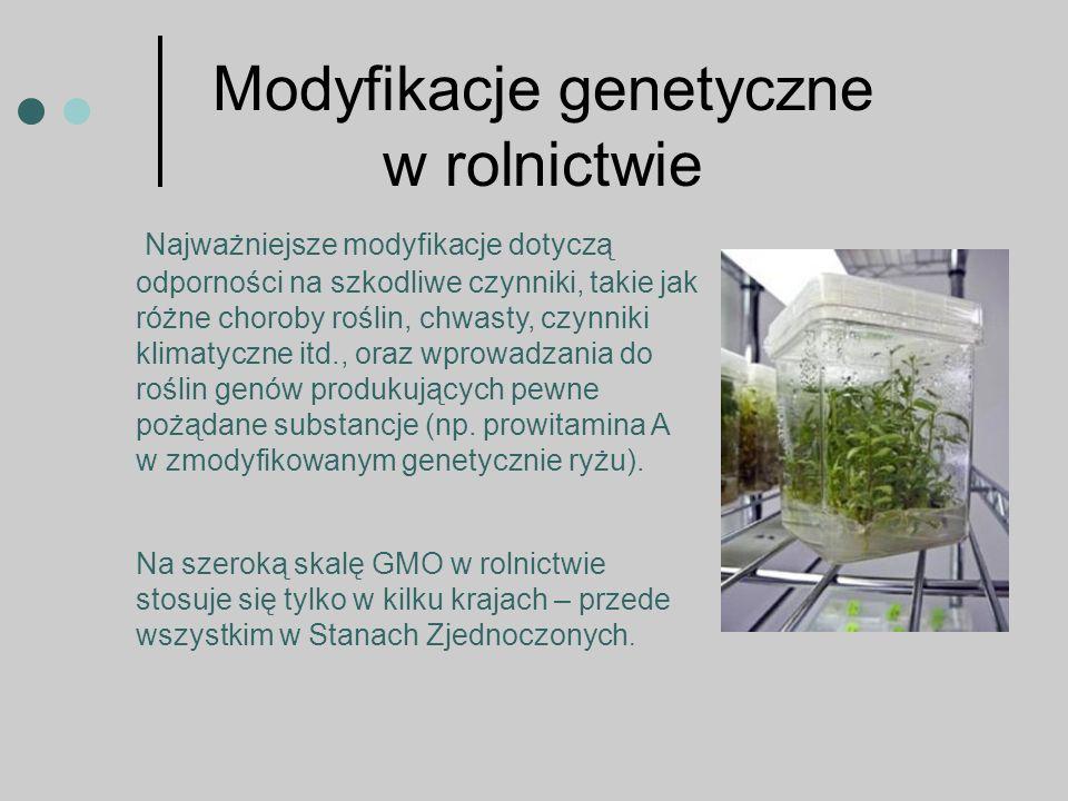 Modyfikacje genetyczne w rolnictwie