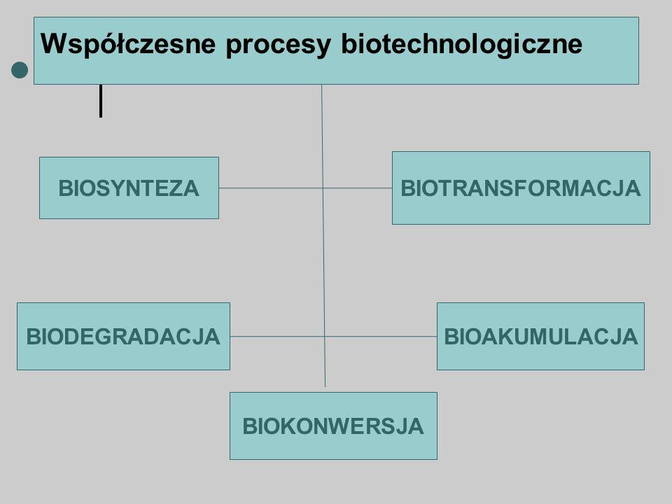 Współczesne procesy biotechnologiczne