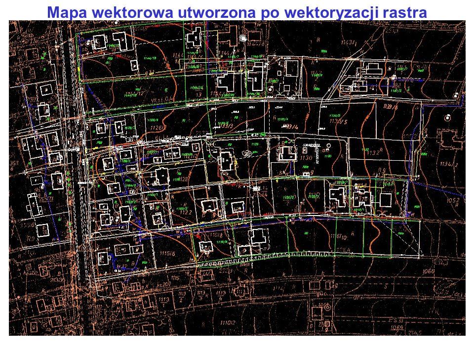 Mapa wektorowa utworzona po wektoryzacji rastra