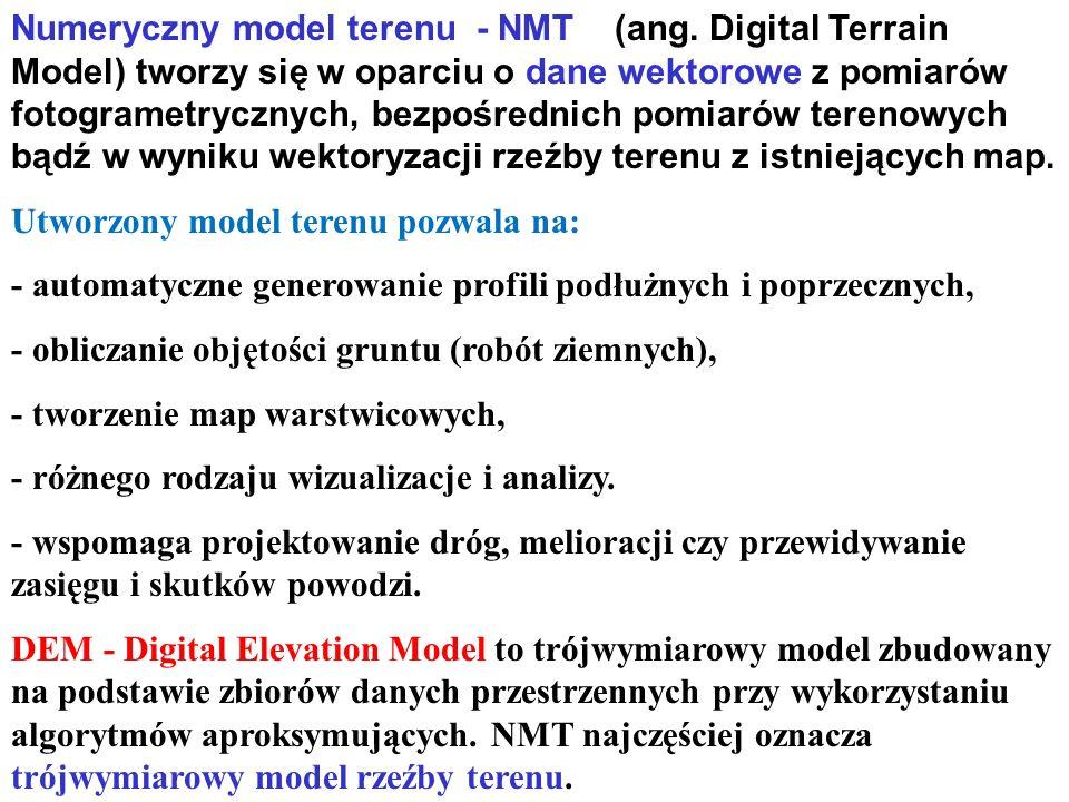 Numeryczny model terenu - NMT (ang