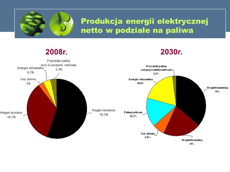 Produkcja energii elektrycznej netto w podziale na paliwa