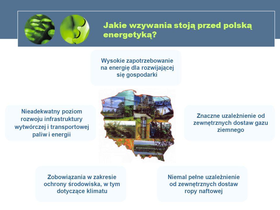 Jakie wzywania stoją przed polską energetyką