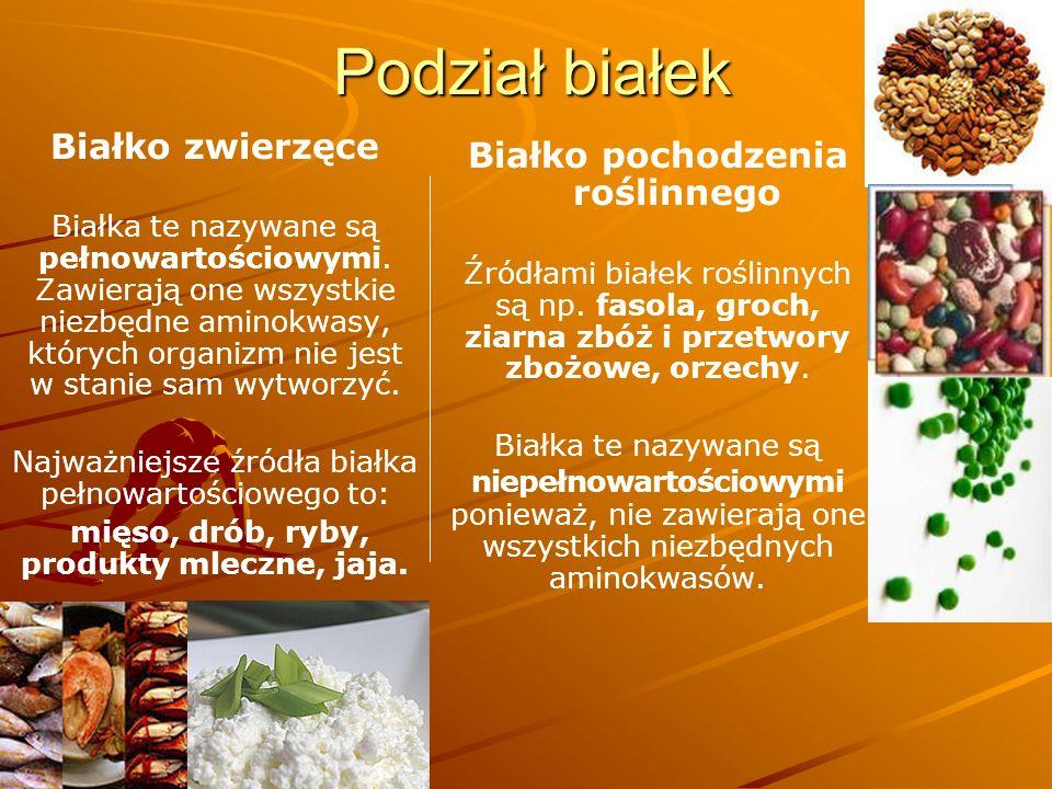 Białko pochodzenia roślinnego