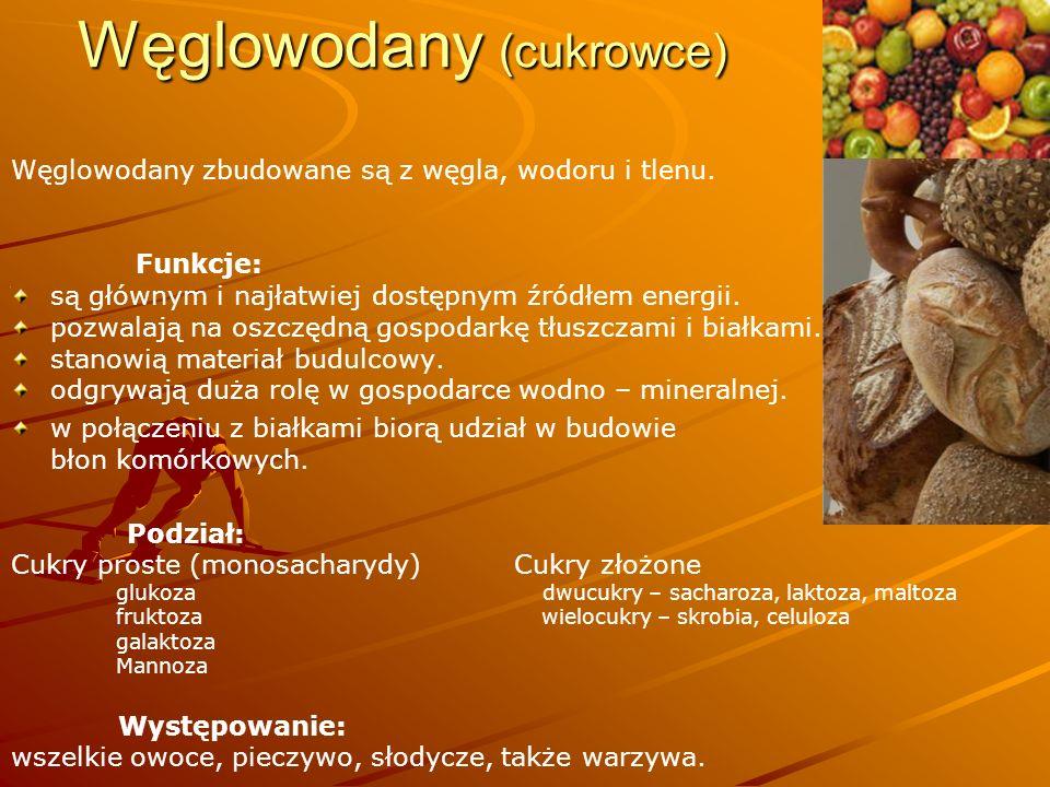 Węglowodany (cukrowce)