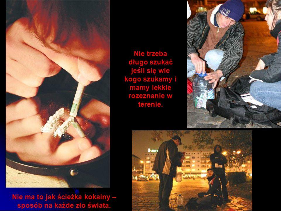Nie ma to jak ścieżka kokainy – sposób na każde zło świata.