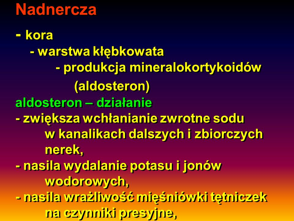 Nadnercza - kora - warstwa kłębkowata. - produkcja mineralokortykoidów