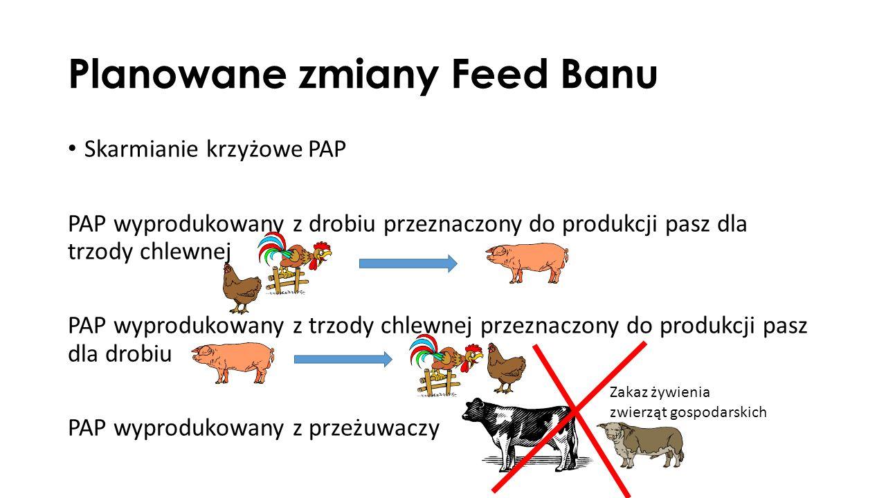 Planowane zmiany Feed Banu