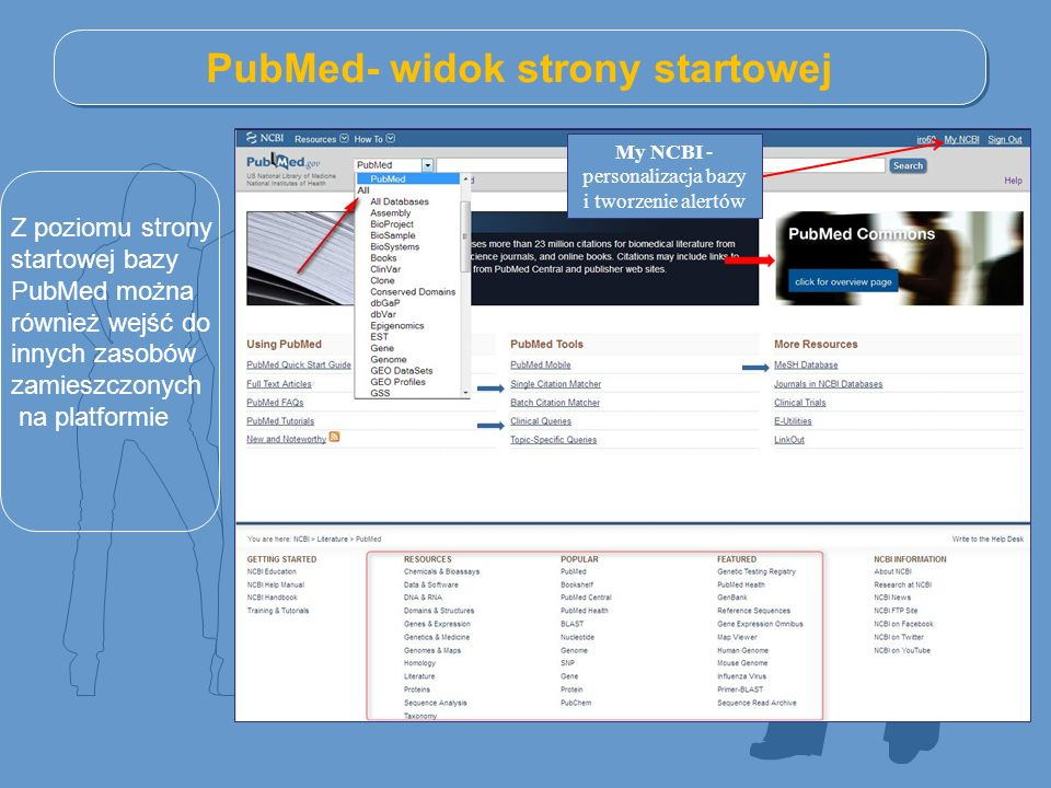 PubMed- widok strony startowej