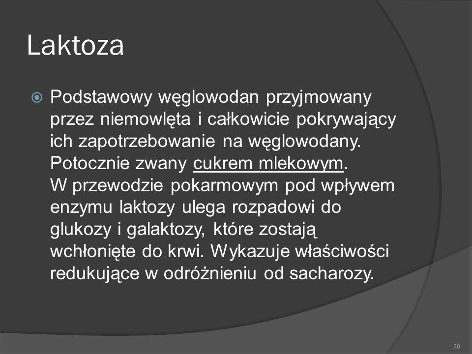 Laktoza
