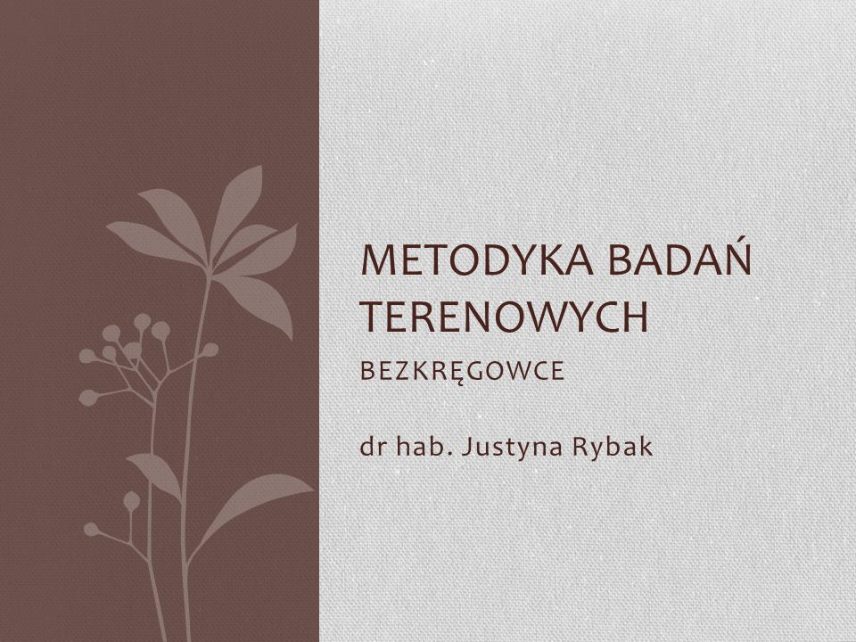 Metodyka BADAŃ TERENOWYCH